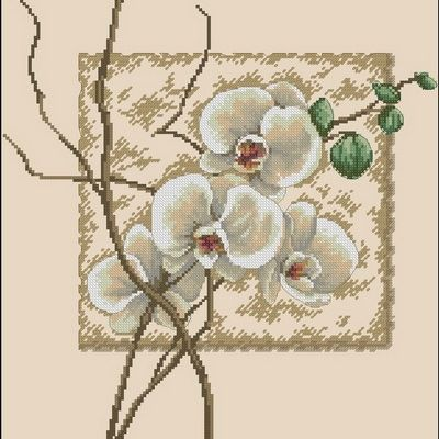 Dimensions 35176 Oriental Orchids